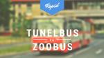zoobus